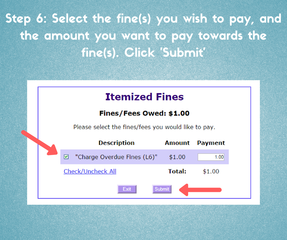 step 6, select the fines you wish to pay, and the amount you want to pay towards the fines, click submit